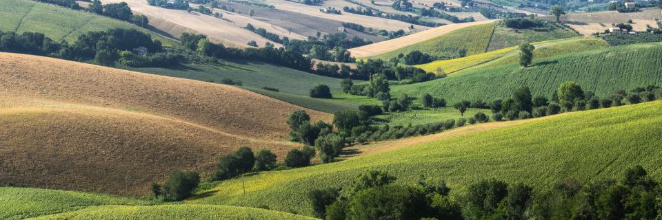Al servizio dell'agricoltura e del territorio