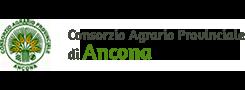 CAP Ancona