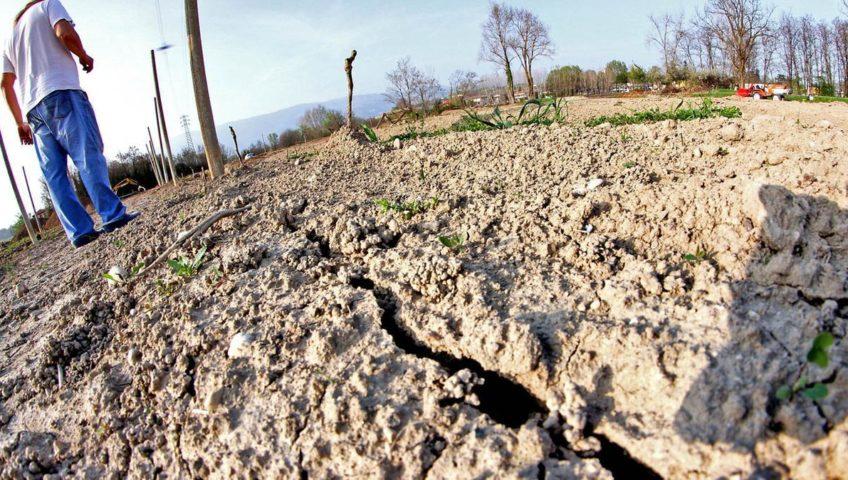 Siccità in agricoltura