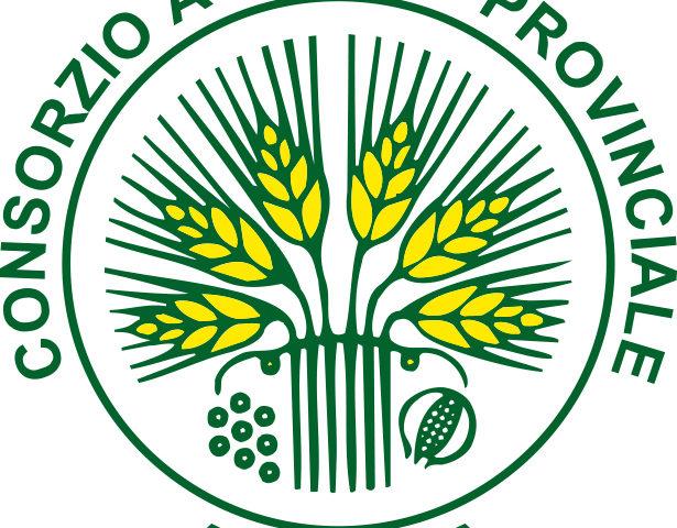 Logo Consorzio di Ancona